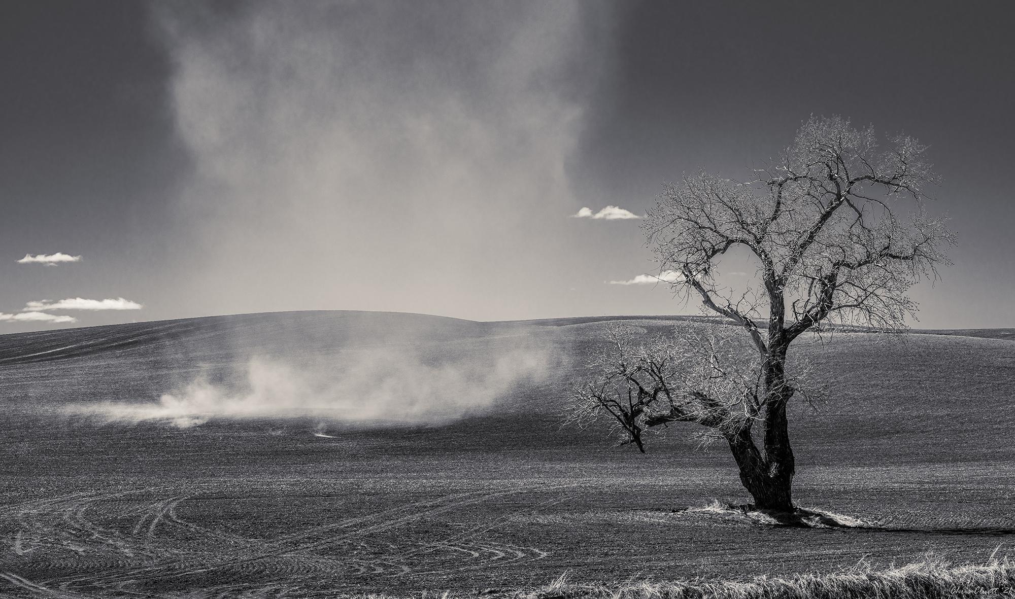 A dust devil blew spontaneously across this hillside.