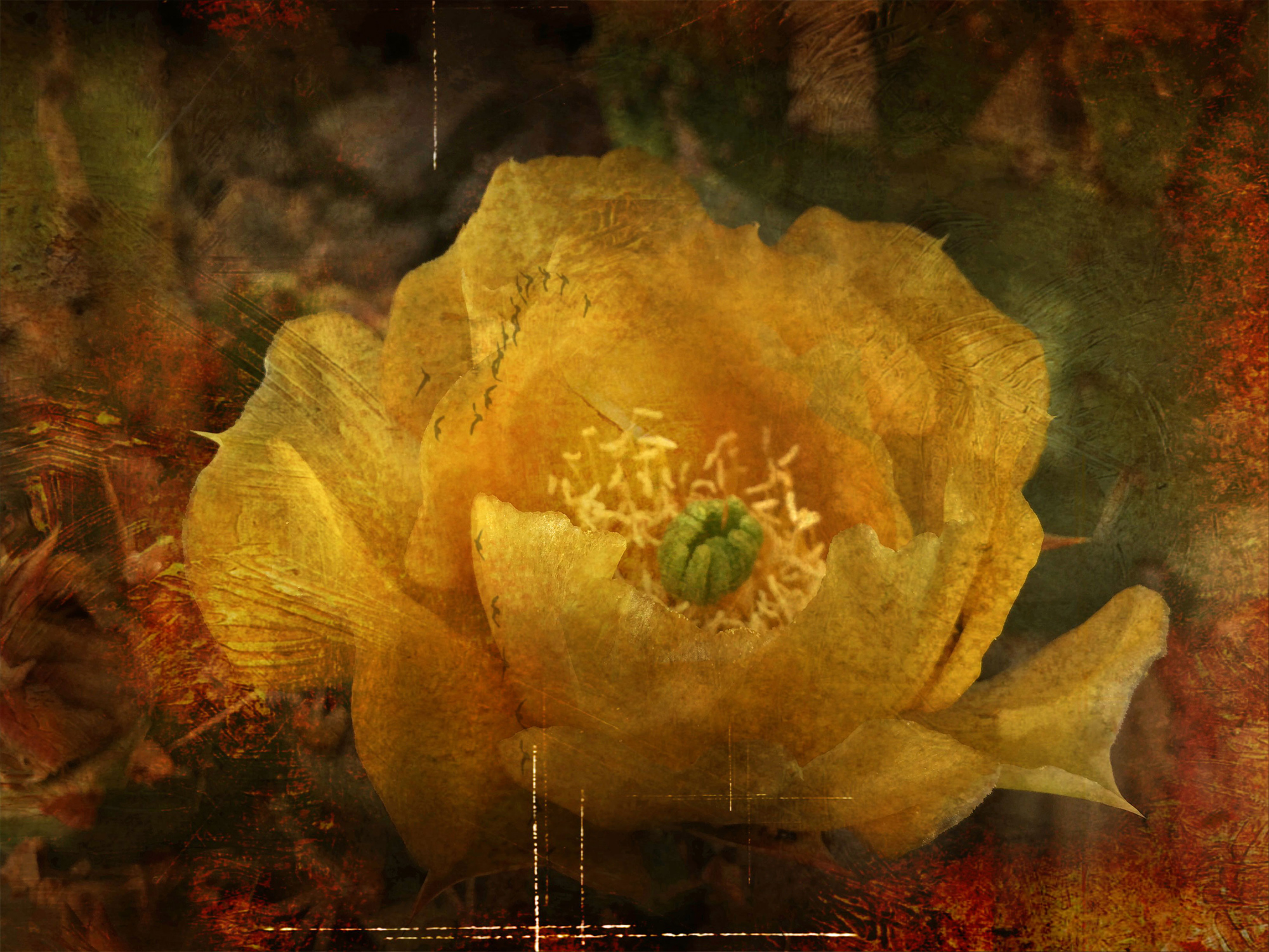 Distressed Yellow Cactus Flower