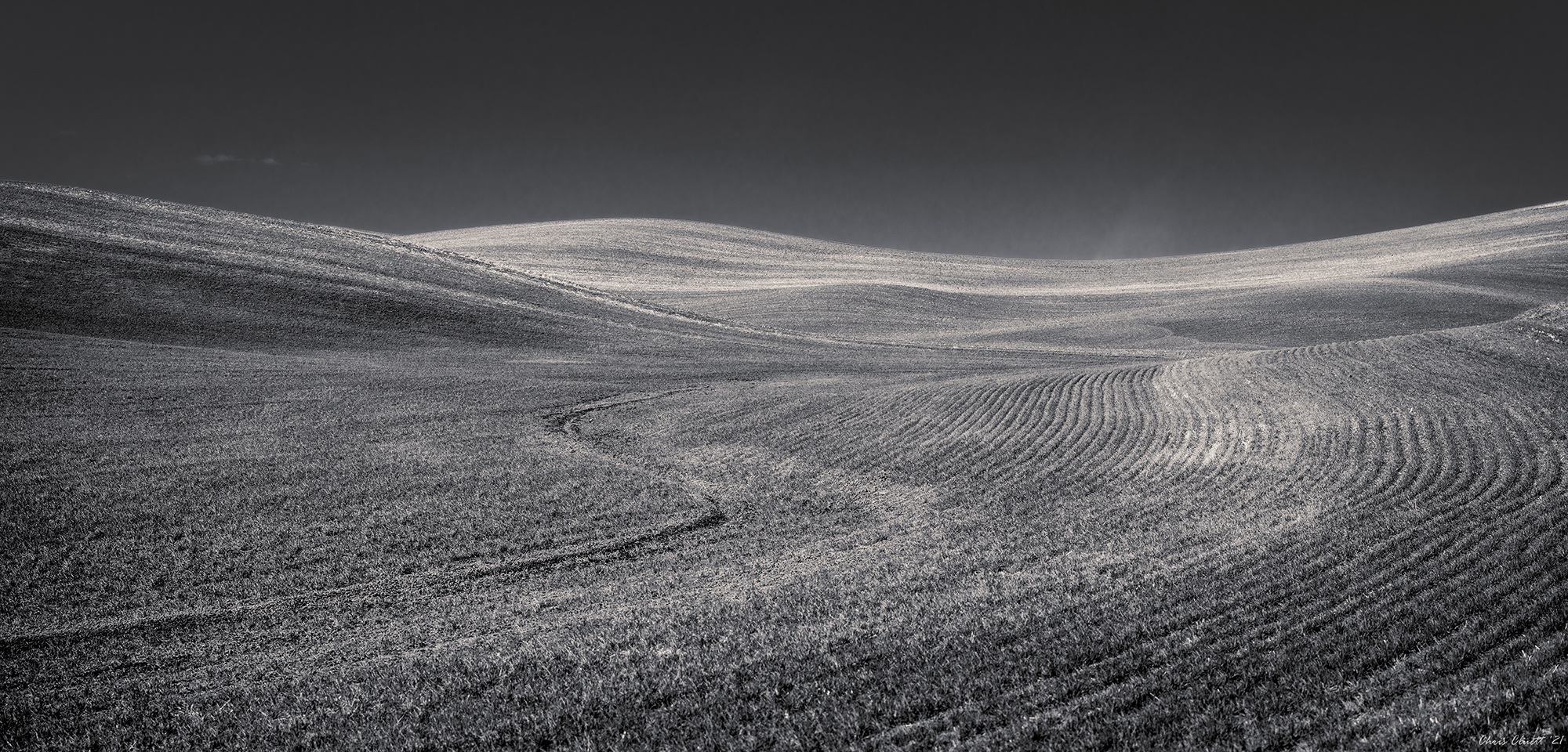 Precise and artful plowing patterns are drawn in the soil.