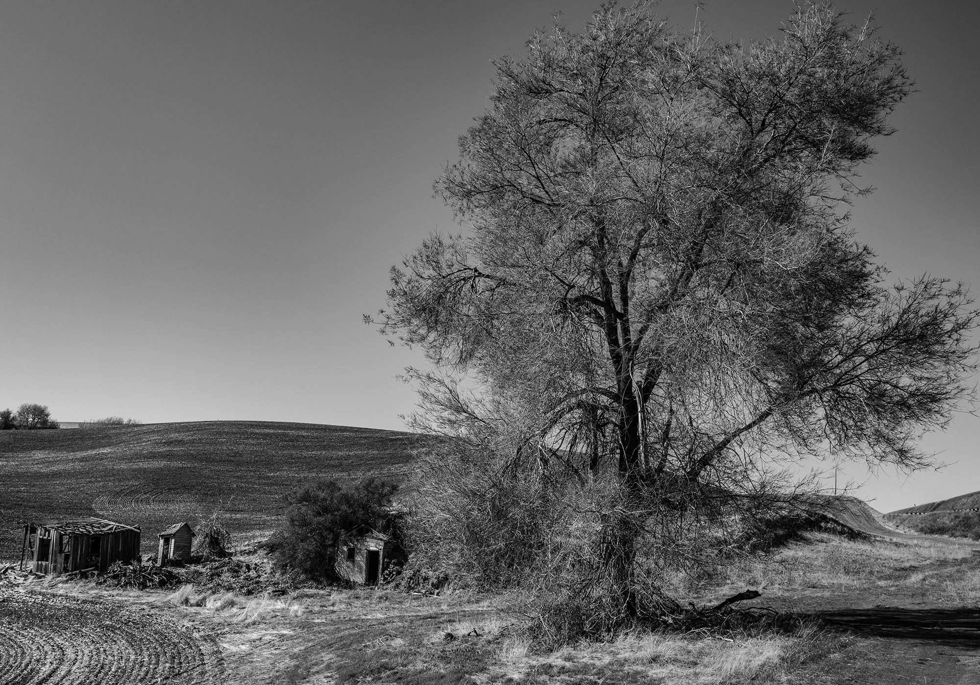 Remnants of an old homestead speak to a hardscrabble lifestyle in years past.