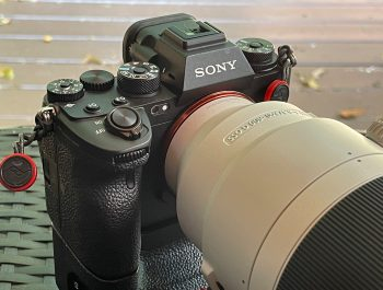 Sony a1 and the 200-600mm G lens – Backyard Test