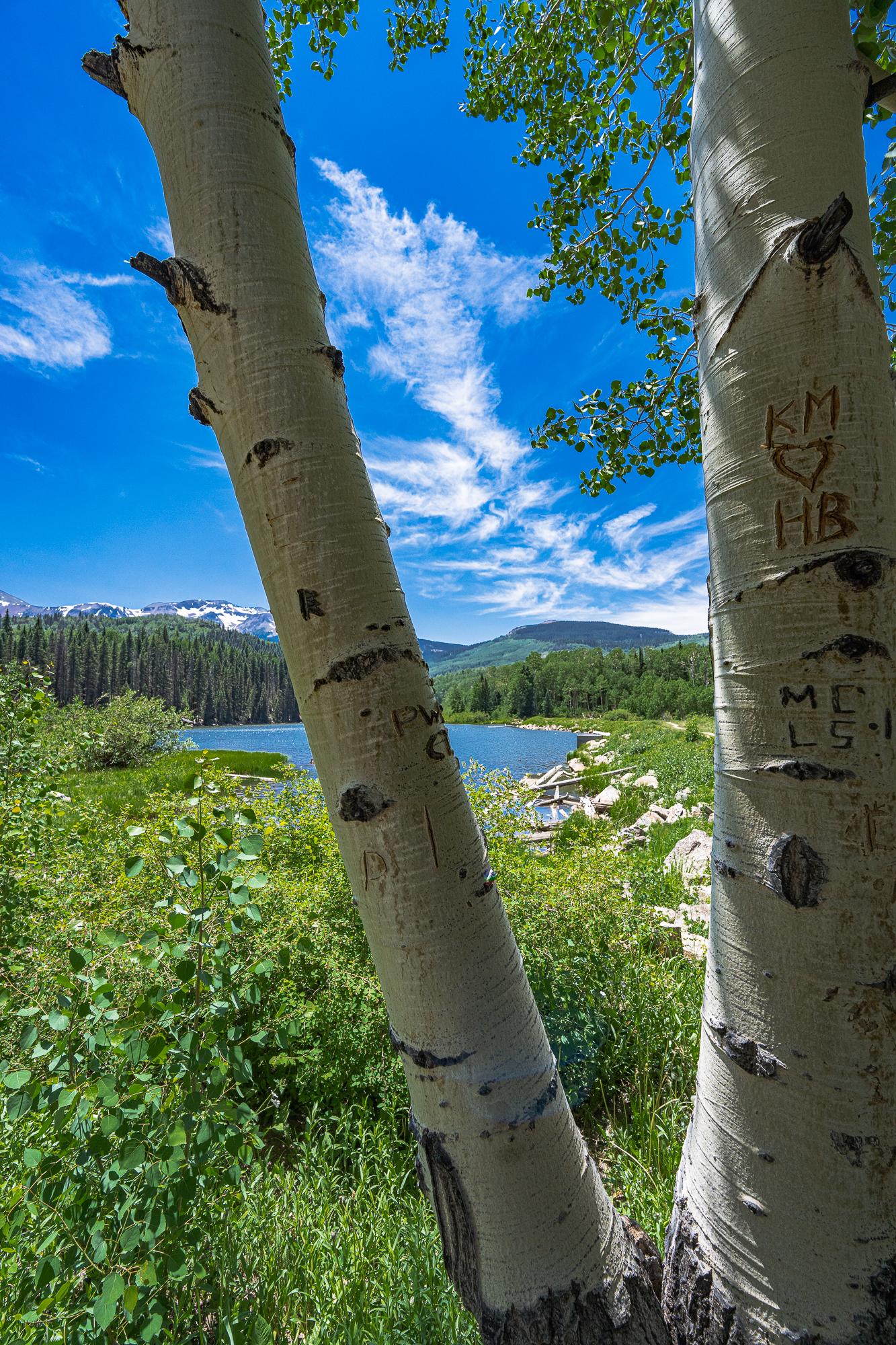 View of Woods Lake, C